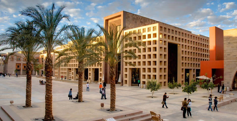 american university in cairo 180 degrees consulting
